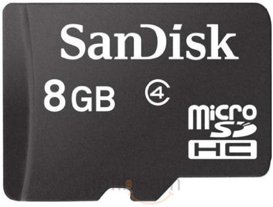 SanDisk 8 GB Micro SD Card Class 4